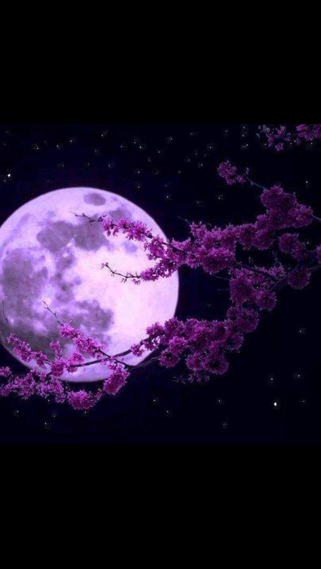 May Full Moon in Scorpio Lighting Up the Dark - Crystal B  Astrology
