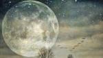 "The Astrology Behind the ""Extra Super"" November Super Moon: November 14, 2016"