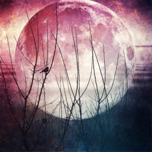 April Pink Full Moon - art by Jennifer Henriksen