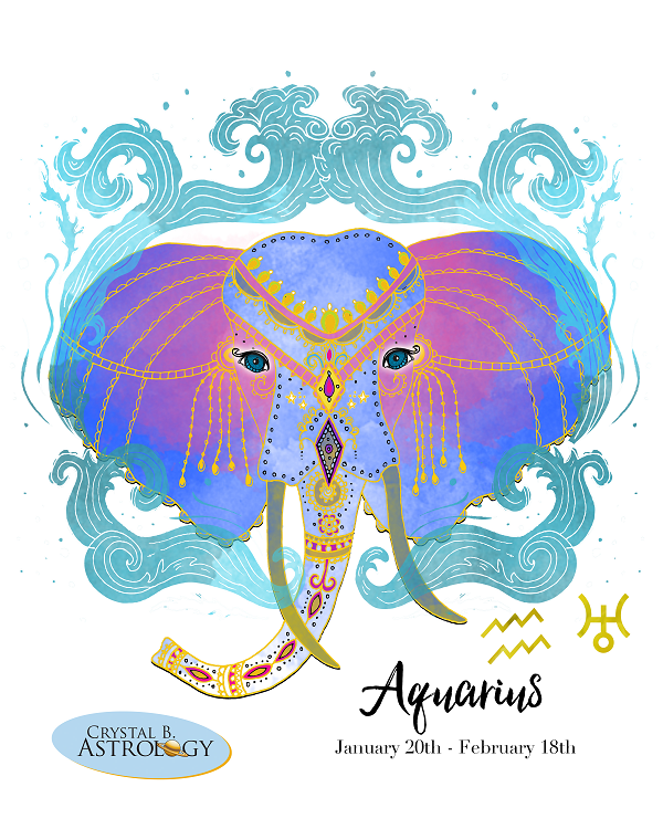 Aquarius Zodiac Sign Information