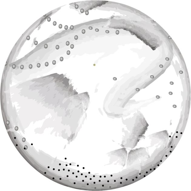 New Moon Astrology   Calendar and Annual New Moon Guides