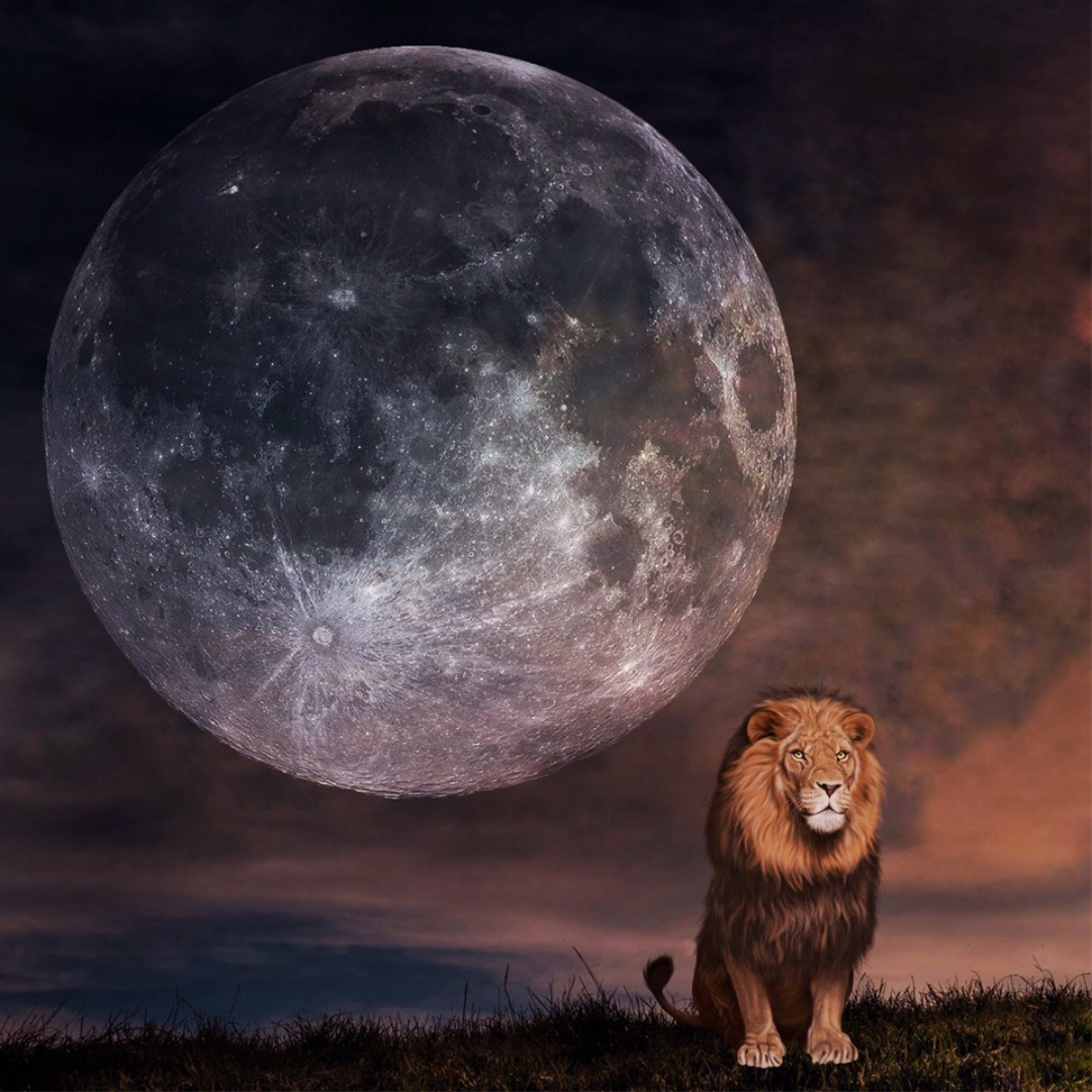 Leo Full Moon February 8-9 2020: Coming Out Into the Spotlight