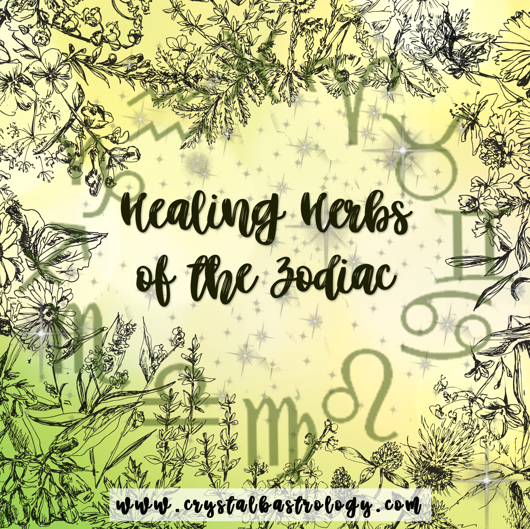 Zodiac Healing Herbs: Explore Astrology Sign Herbal Earth Connection